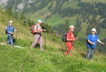 Wandergruppe-Adelboden2